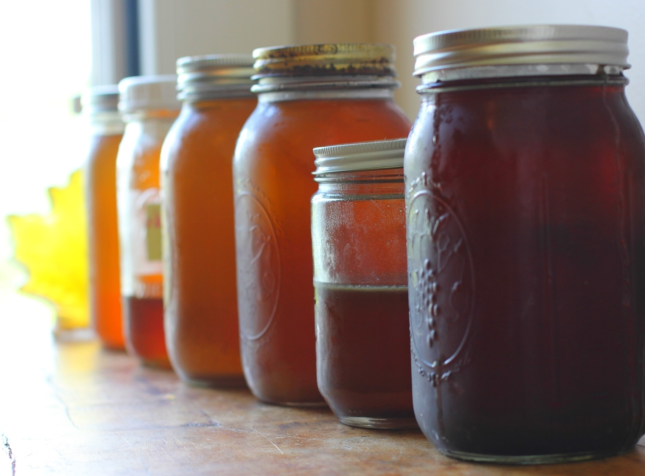 the gradient of dark, late season syrup all the way back to the lightest from the very beginning.