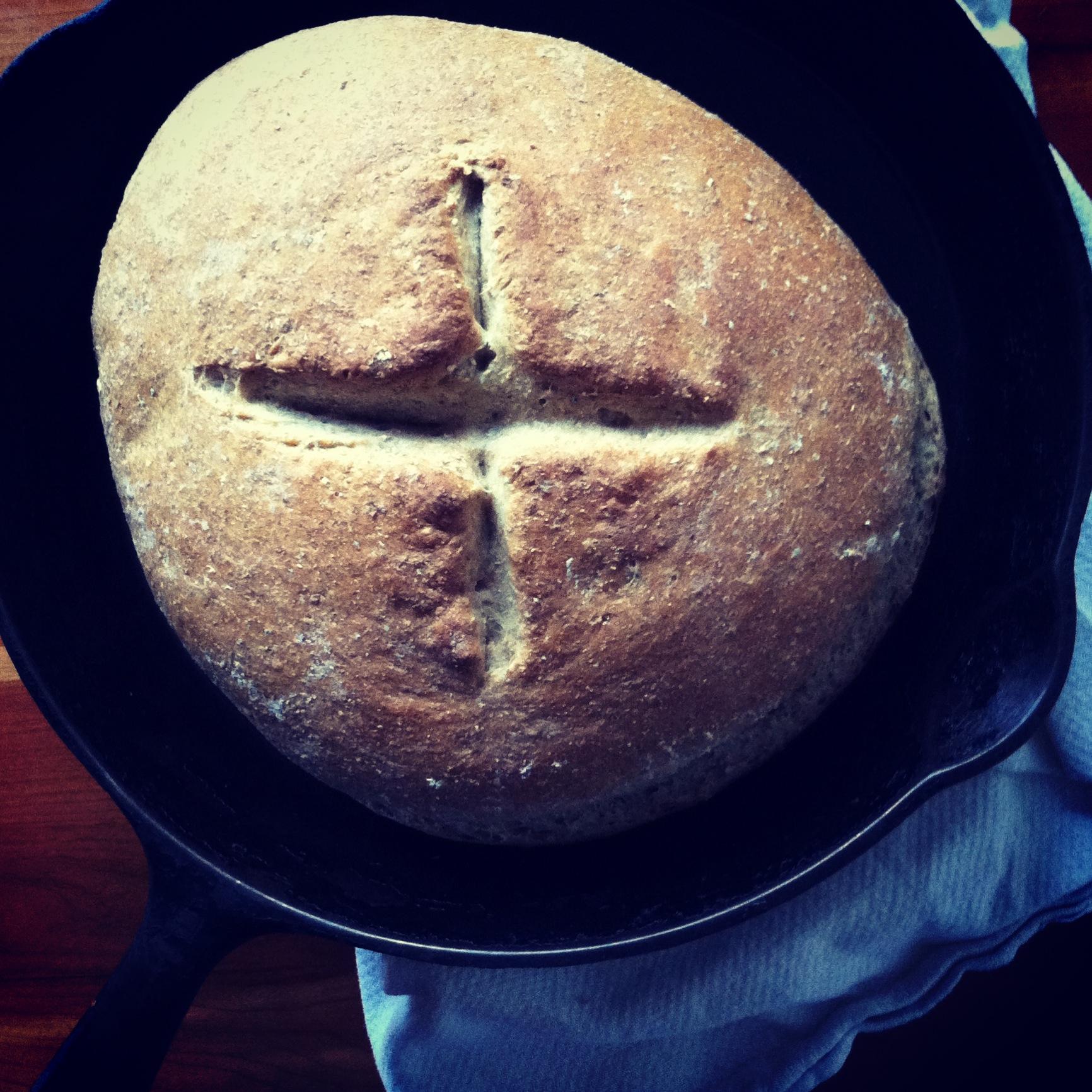 cozy bread