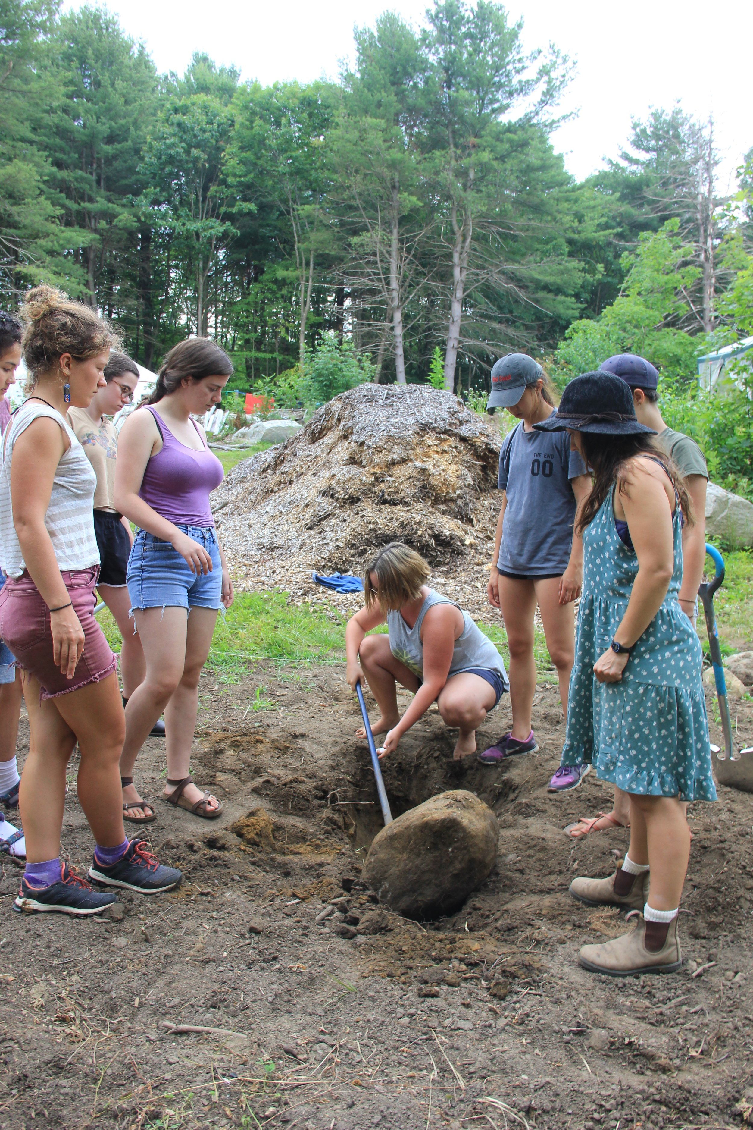 people power confronts shutesbury's best crop: rocks