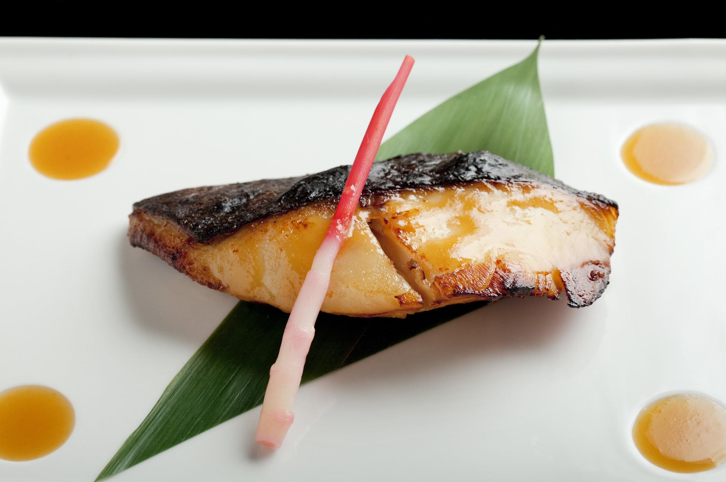 Black Cod Miso photographed by Steven Freeman.jpg