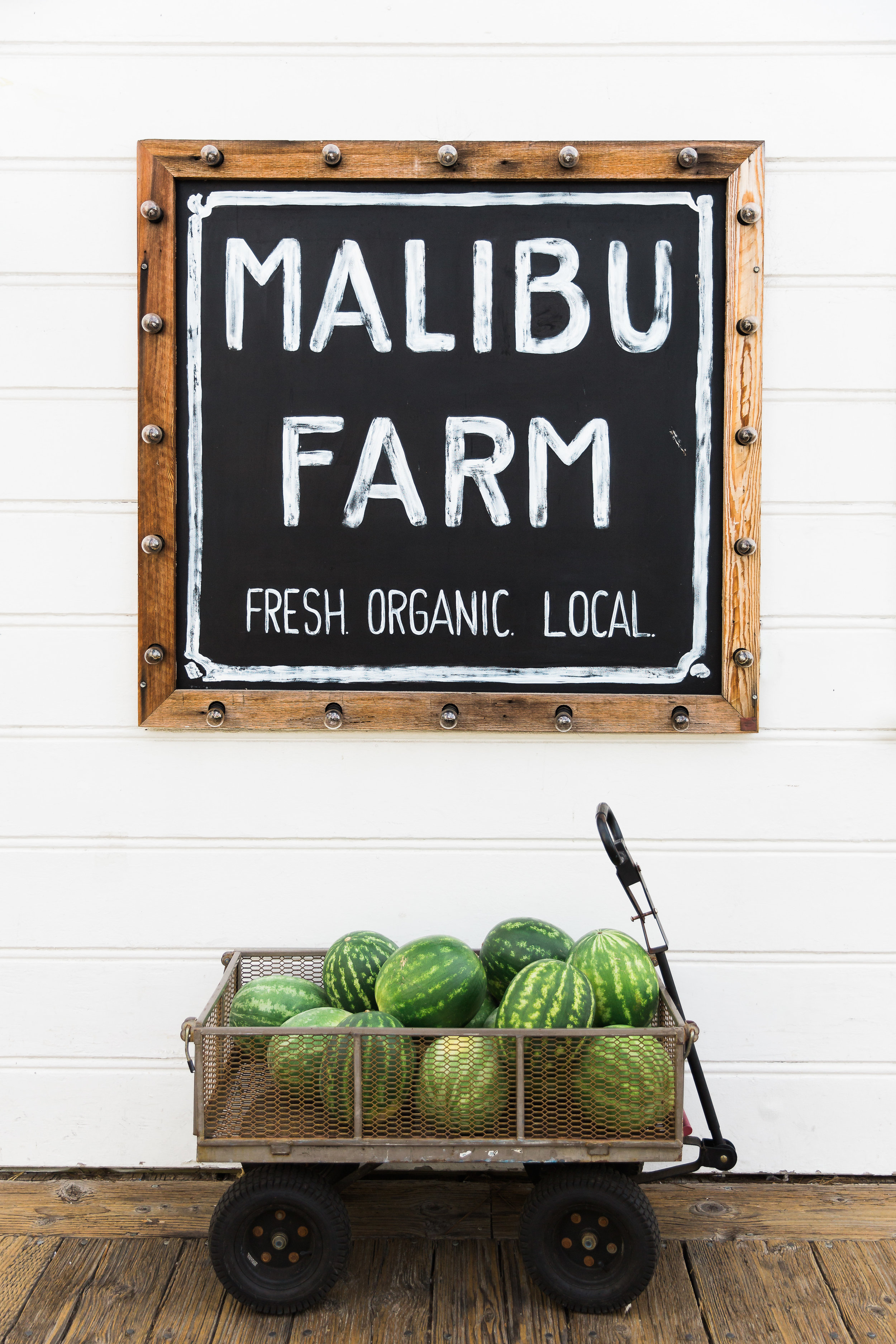 MalibuMagJW-MalibuFarm-3.jpg