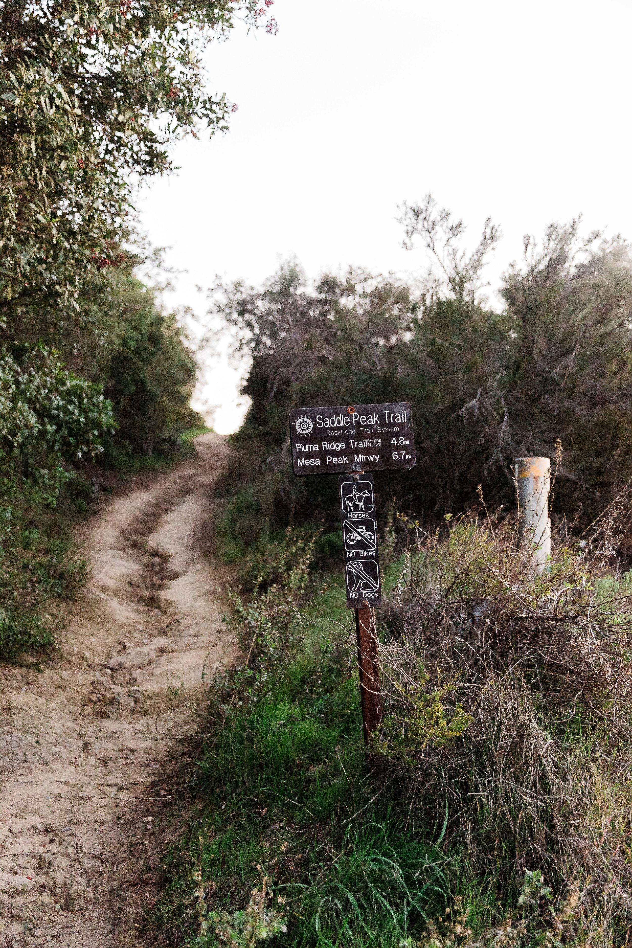 MM_Saddle Peak Hike_Edited-3.jpg