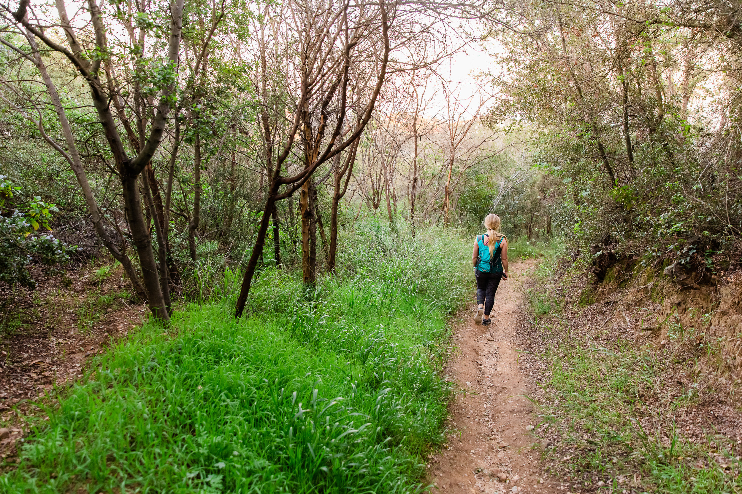 MM_Saddle Peak Hike_Edited-6.jpg