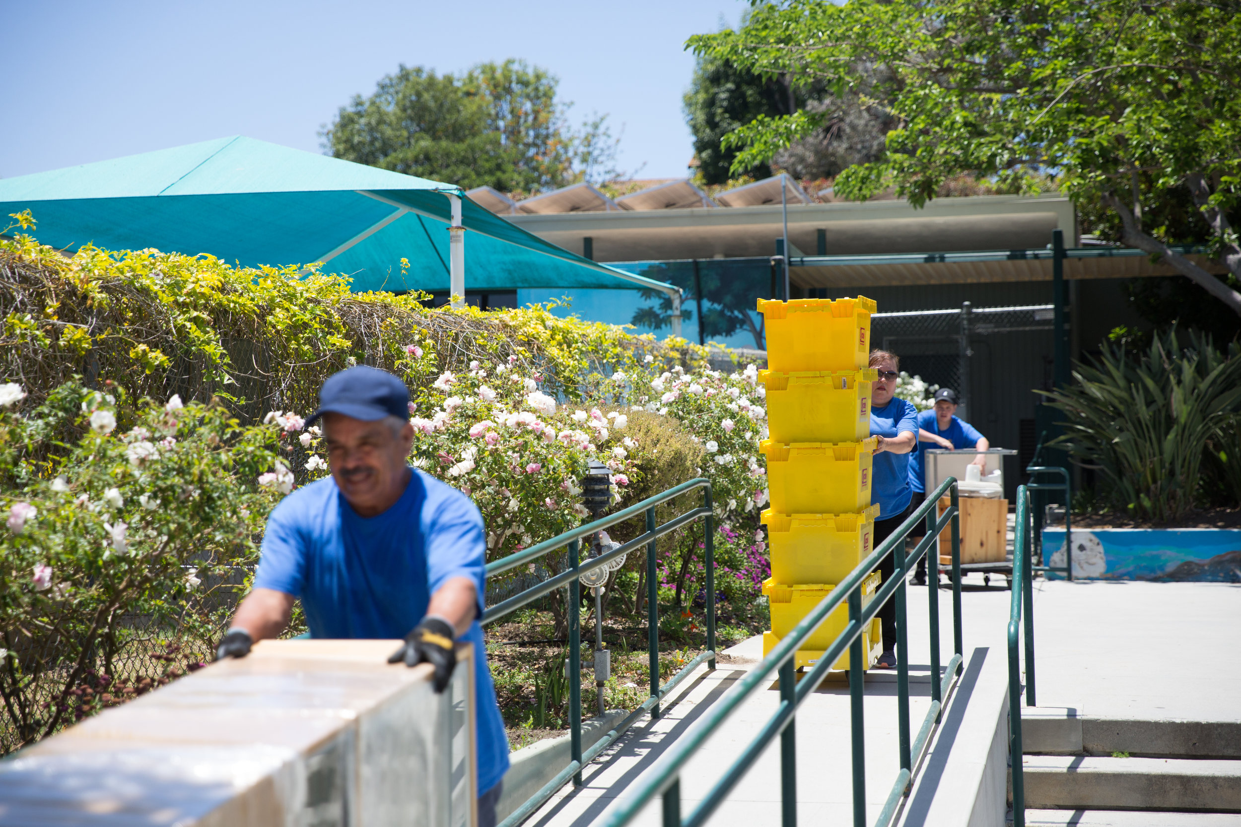 Point Dume Marine Science Elementary School undergoes planned renovations during summer 2018, part of a district-wide project that has brought cosmetic and moderate repairs to numerous SMMUSD campuses. Officials say the fixes will help support the planned merger in 2019.