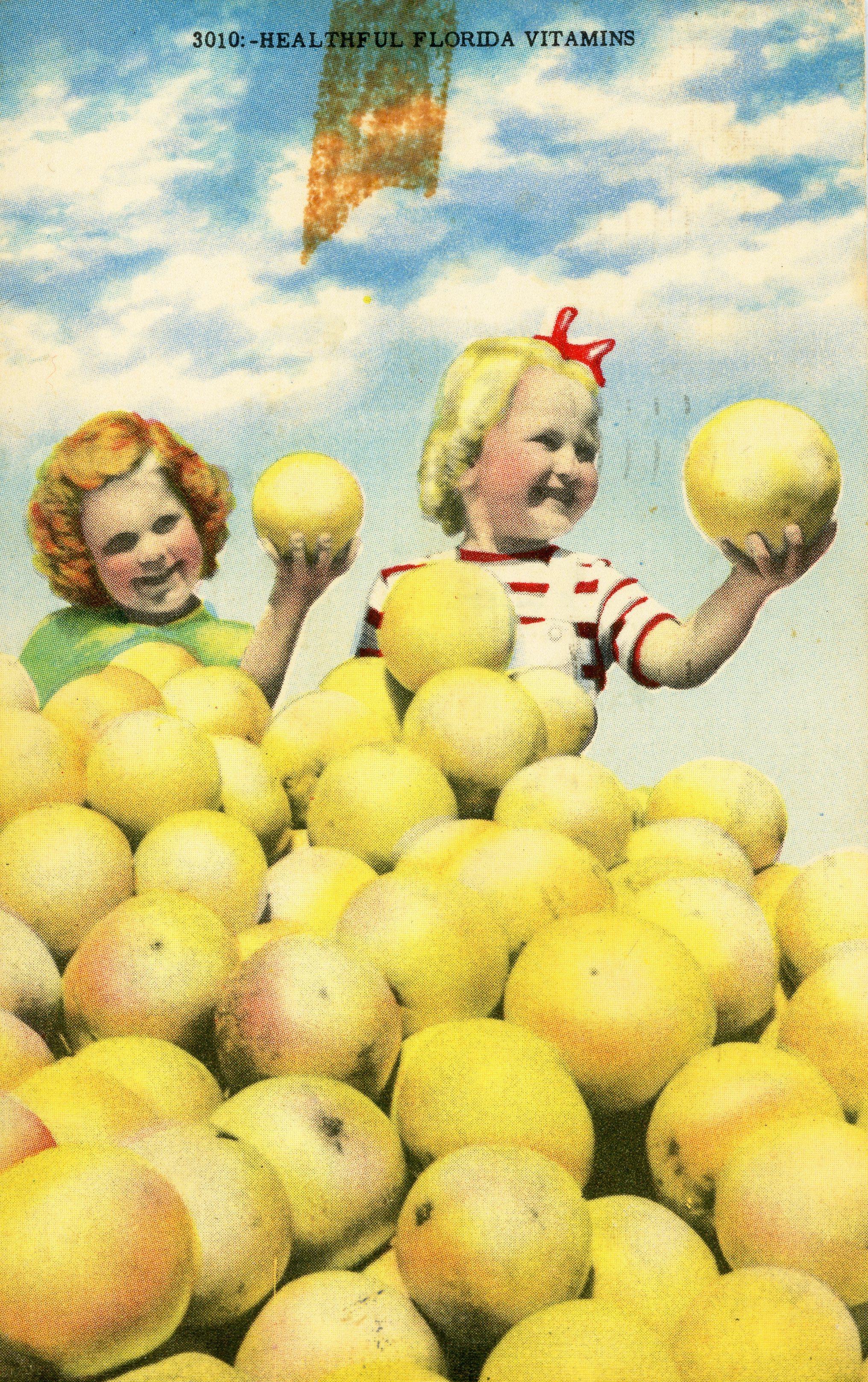 vintage_florida_grapefruit