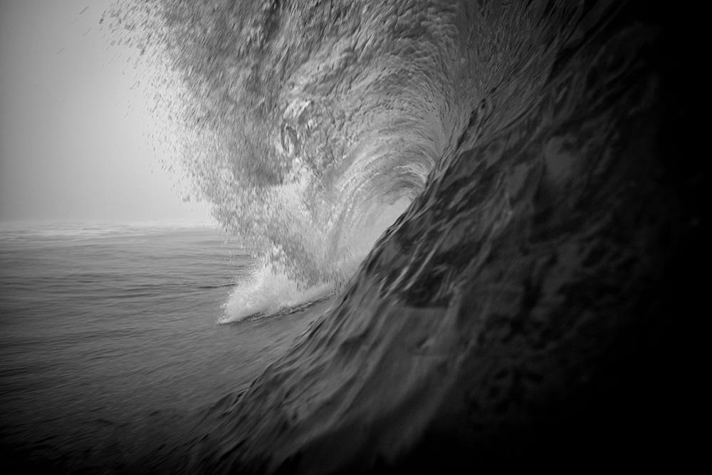 """Lurker"" Ocean Beach, San Francisco Ca."