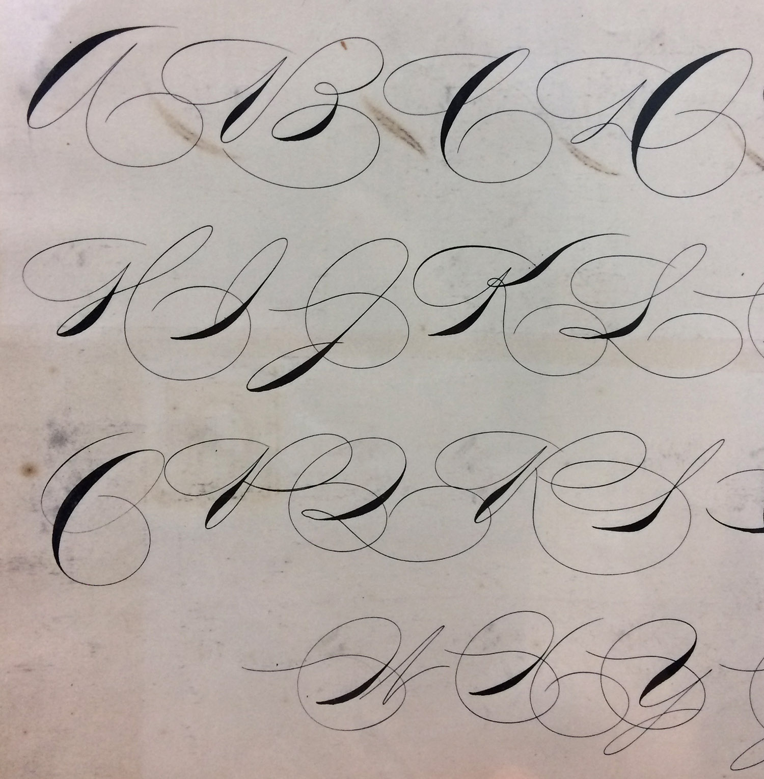 penmaship_specimens_letterforms_011.jpg