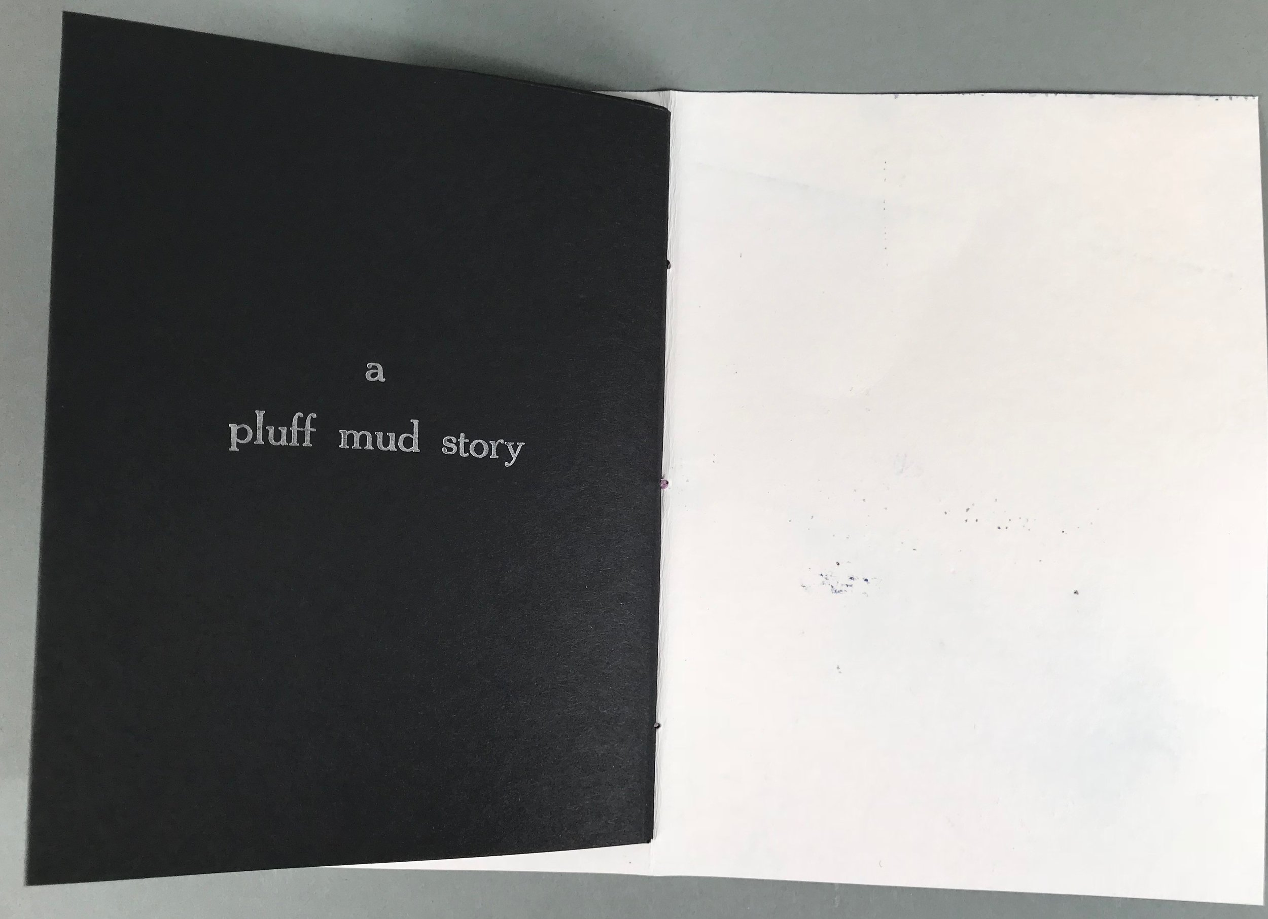 Artist's Book - 14 of 29.jpg