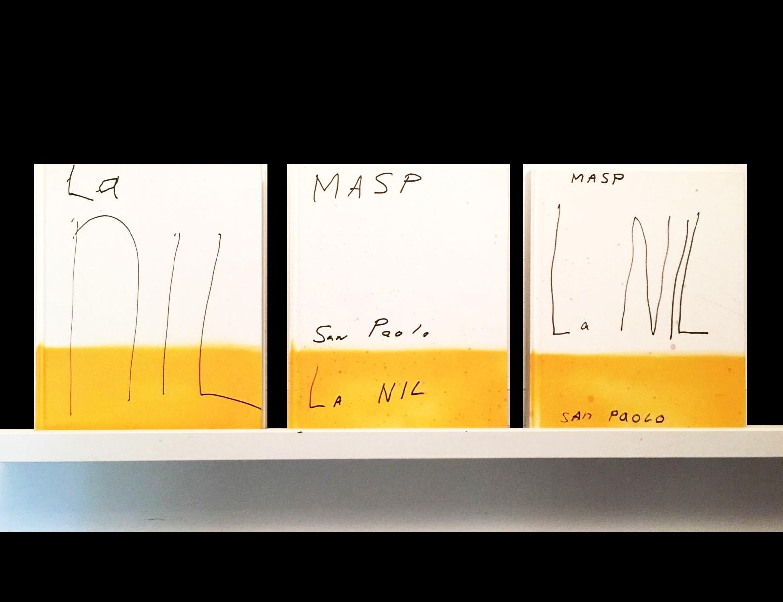 """""""La NIL"""",  2014, set of 3 UNIQUE painted book editions."""