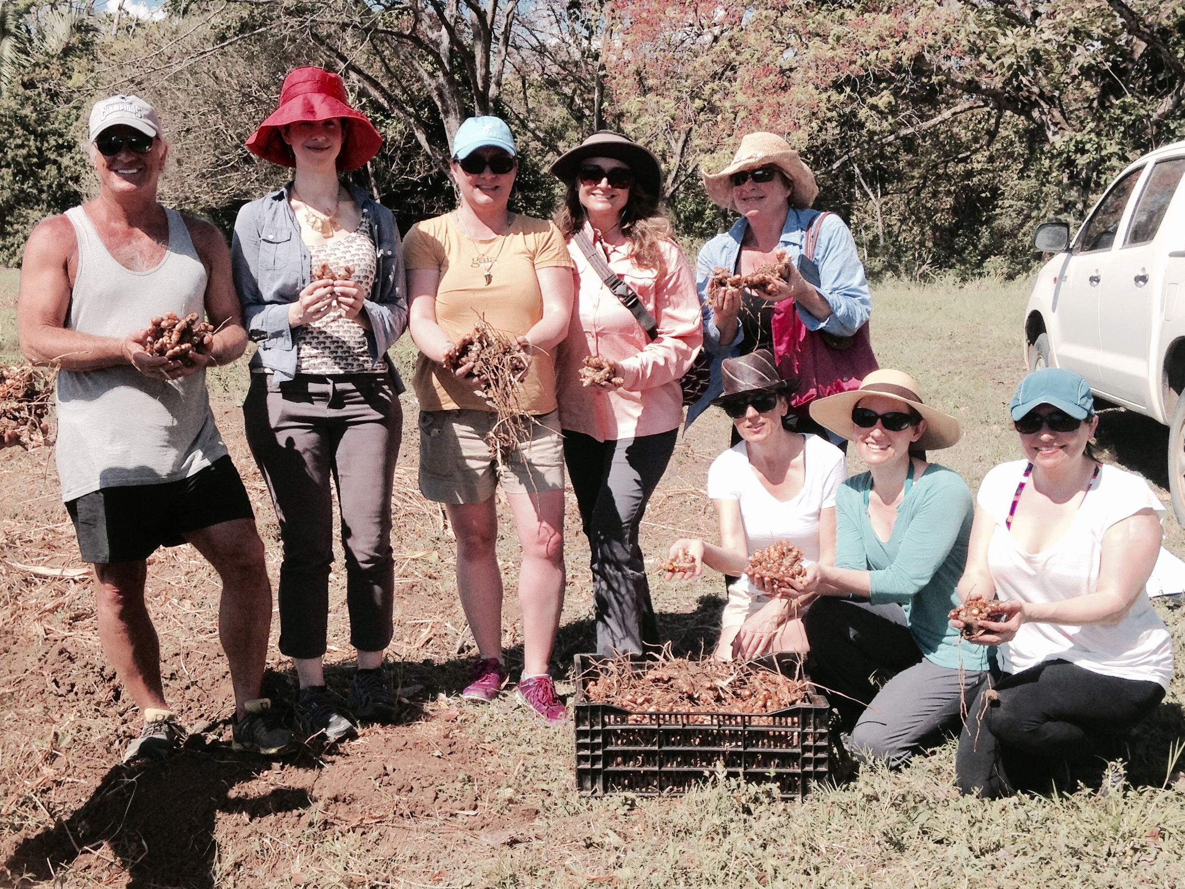 Visiting Gaia's turmeric farm and getting our hands on the freshest product!