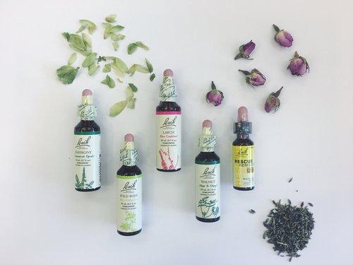 Bulk Herbs — Cambridge Naturals