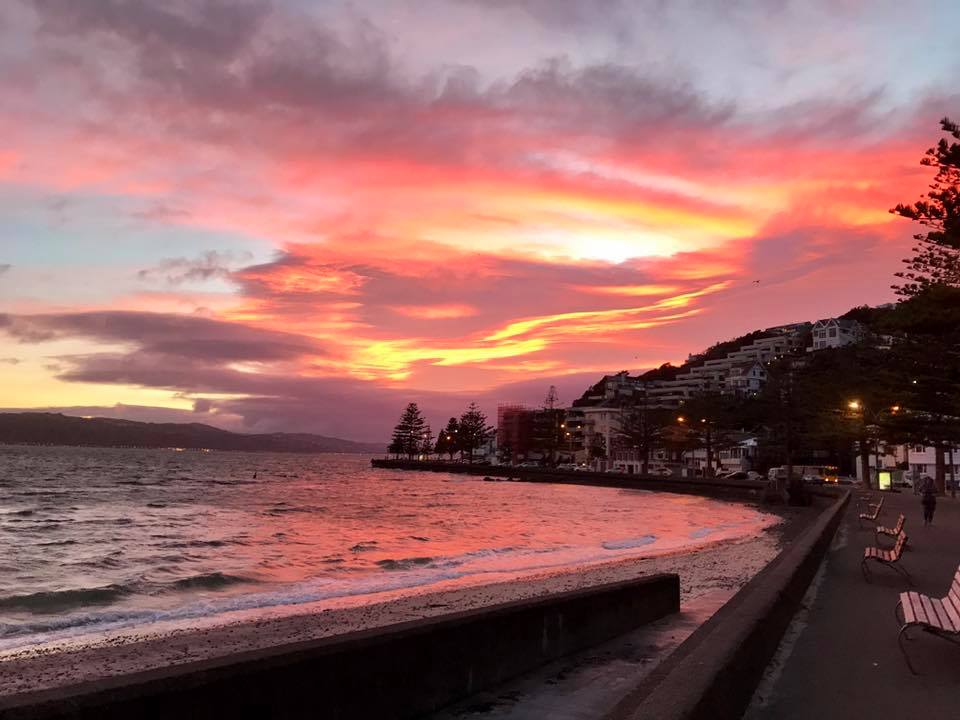 The beautiful view along Oriental Parade