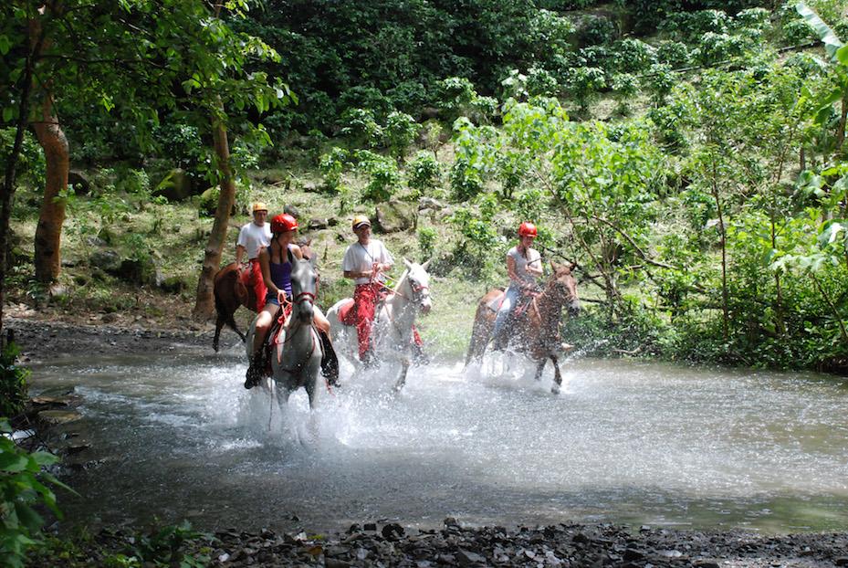 Waterfall_Canopy_horseback_riding.jpg