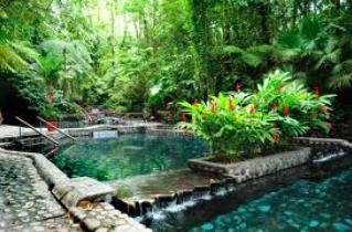 Jungle Hot Springs