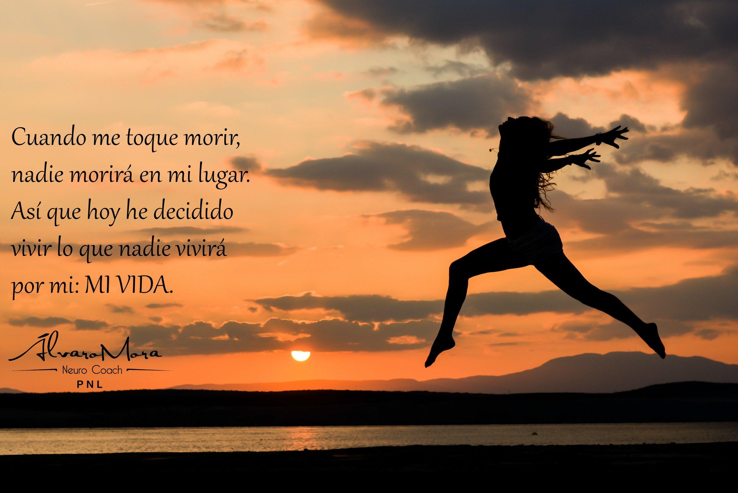 Libreblacka.jpg