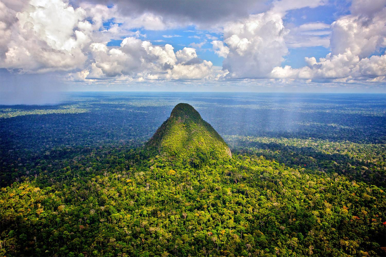 Sierra Del Divisor - Rainforest Trust Image