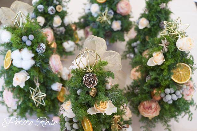 Xmasですね😊 今年のクリスマスレッスンは、クリスマスツリーをみなさんで作りました🎄 ・ 淡く優しい色のローズとクリスマスオーナメントで、かわいいクリスマスツリーができあがりました♡ ・ ローズが枯れてきたら、今度は違う色の🌹でアレンジし直して楽しんでくださる方もいて、それもまたとっても素敵でした♡ ・ みなさまステキなXmasをお過ごしください😊🎁✨ ・ #flowers #flowergift #flowershop #flowerschool #flowerstagram #吉祥寺 #吉祥寺フラワー #吉祥寺フラワーアレンジメント #吉祥寺フラワーレッスン #フラワーレッスン #フラワー #フラワーアレンジ #フラワーアレンジメント #吉祥寺大好き #花のある暮らし#花教室 #吉祥寺花教室 #petiterose #ワークショップ #習い事 #かわいい #オシャレ #クリスマスツリー