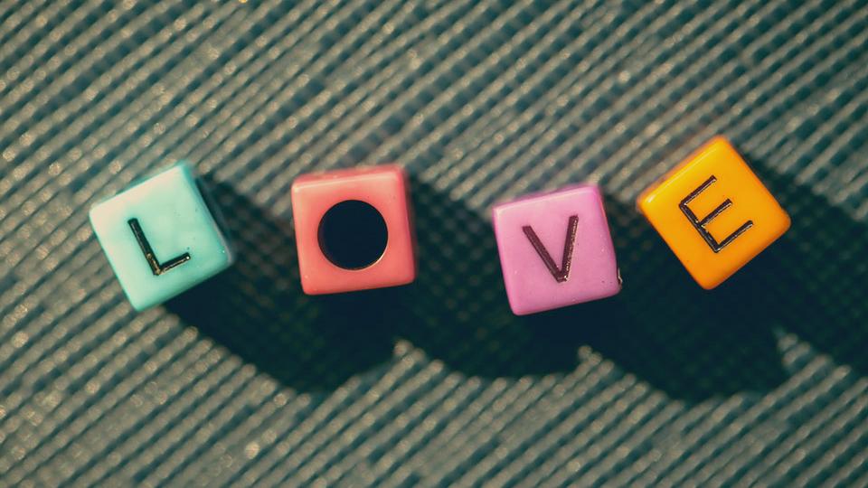 8_23_Foxgrove_music_love