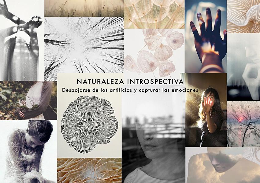 bookcreative-2.jpg