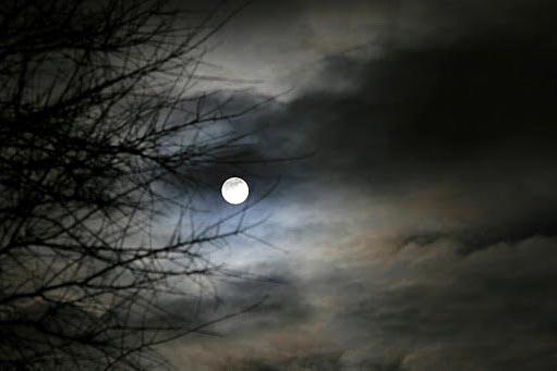 solstice.jpg