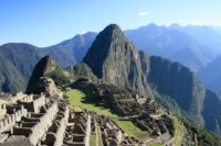 Maca grows at extremely high elevations in Peru, a hint to it's hardy signature