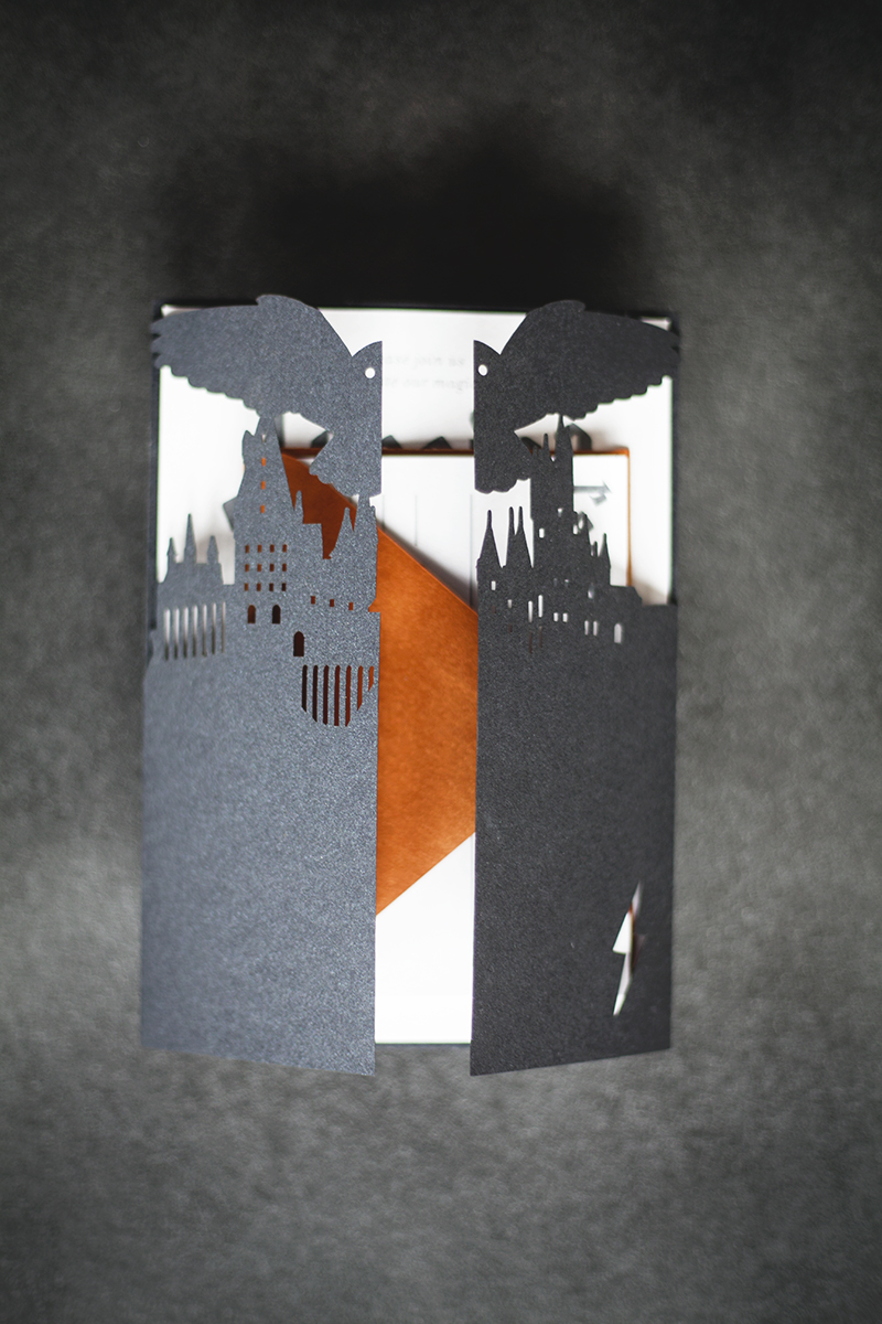 Hogwarts, Harry, and Hedwig Invite