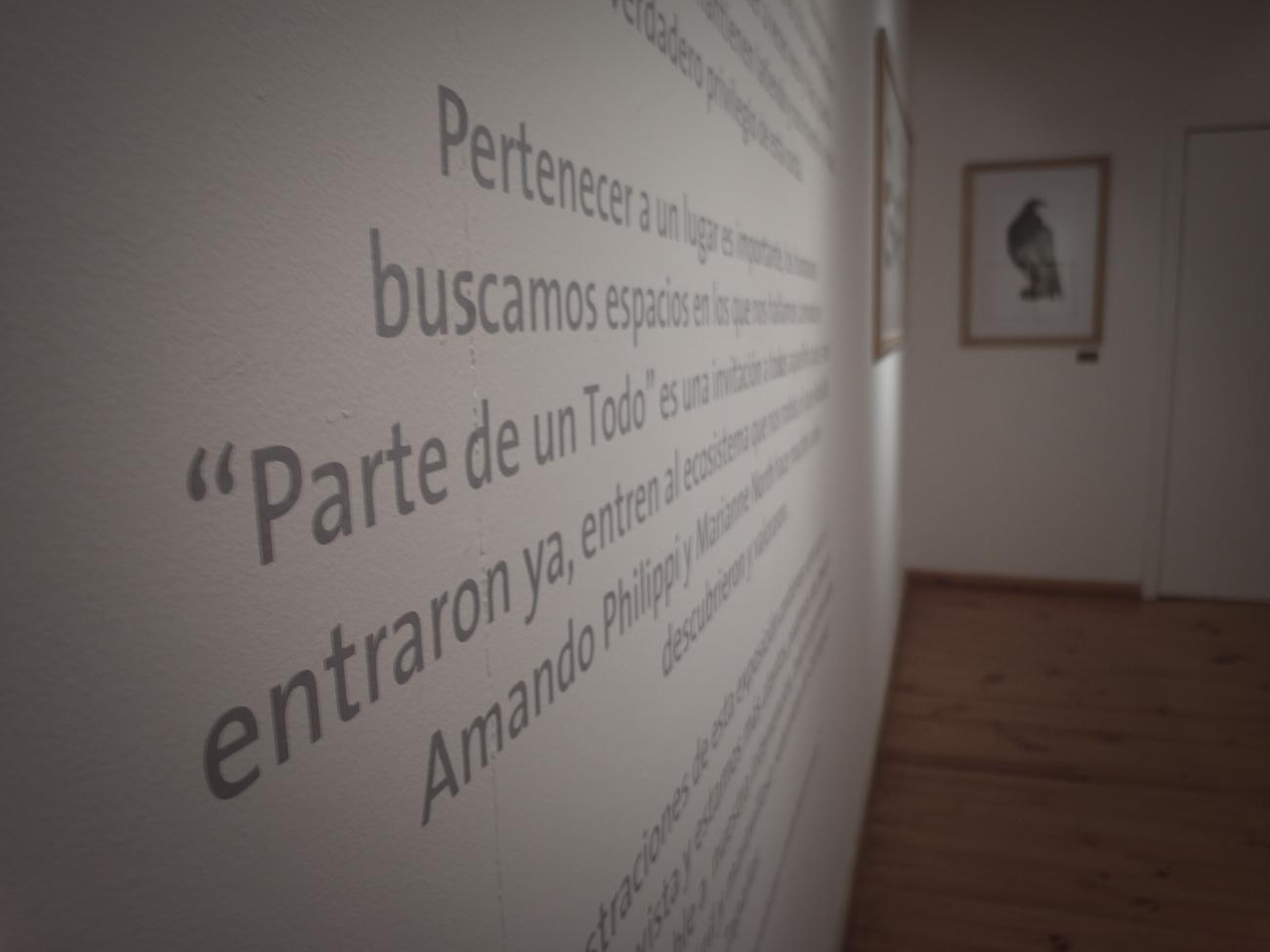 detalle---Antonia-Lara-G.jpg
