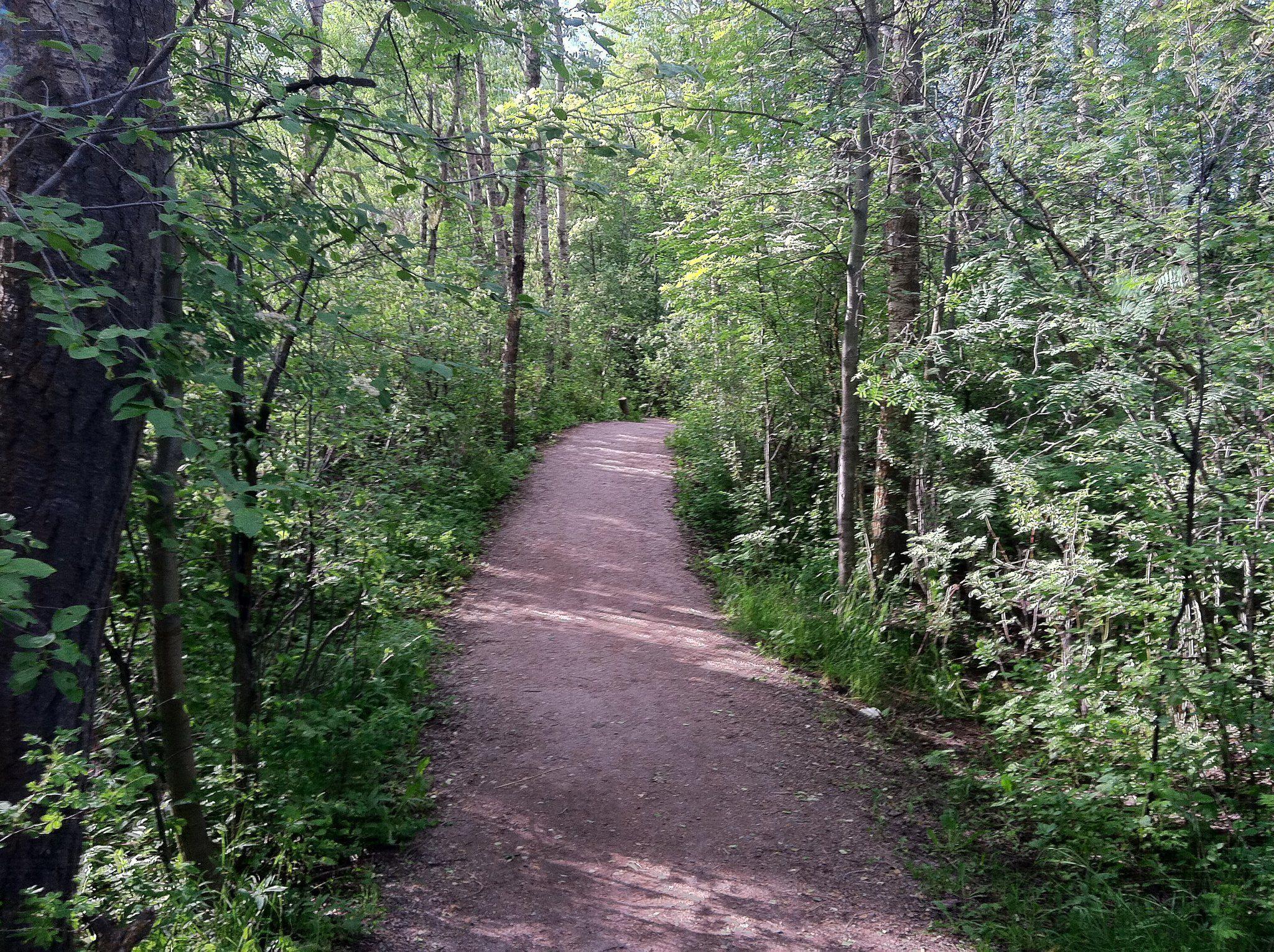 trg-gallagator-trail-bozeman.jpg