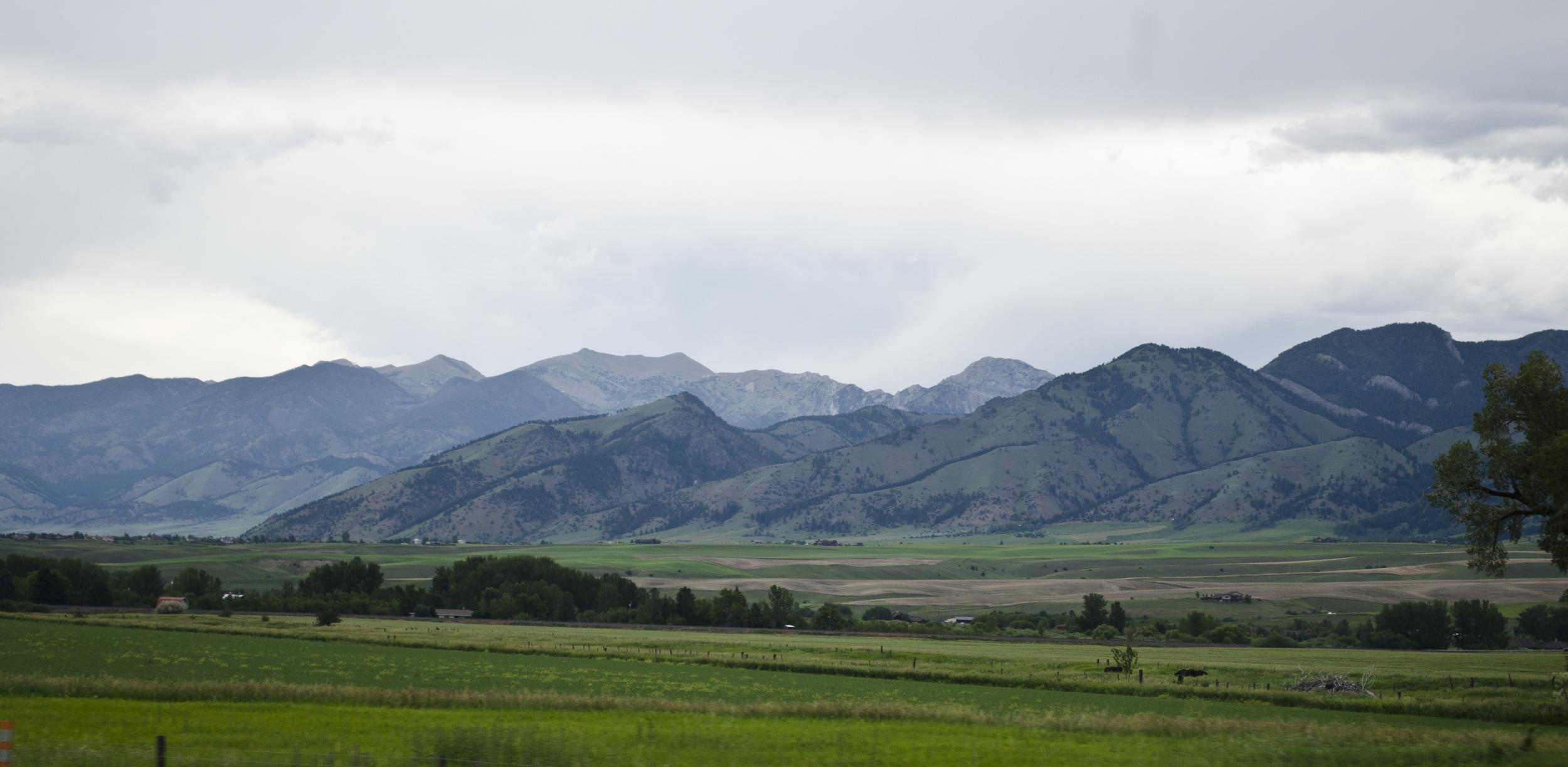Looking_NE_at_Bridger_Mountains_-_Montana_-_2013-07-07.jpg
