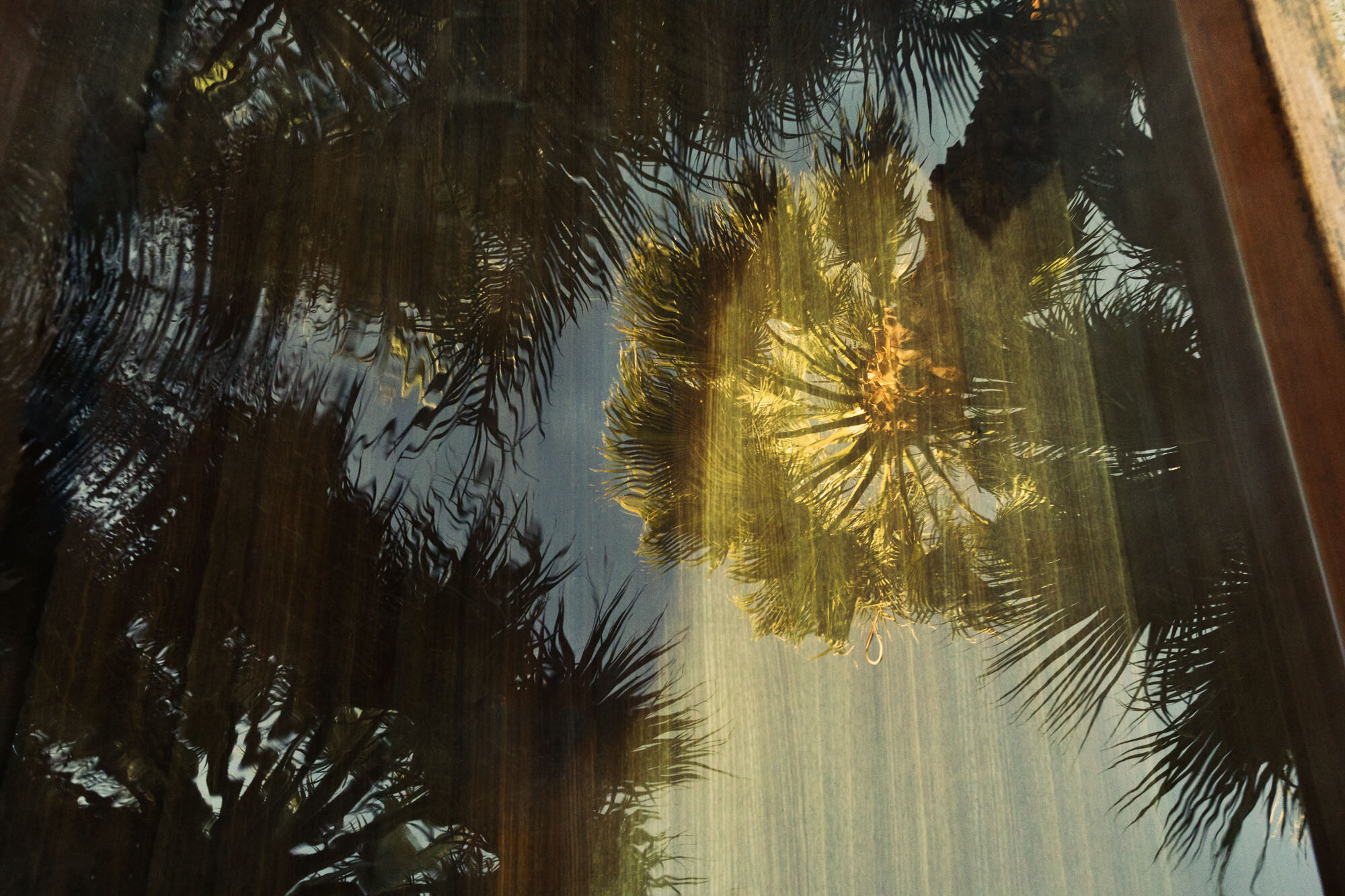 Two Bunch Palms x Grotto_0200.jpg