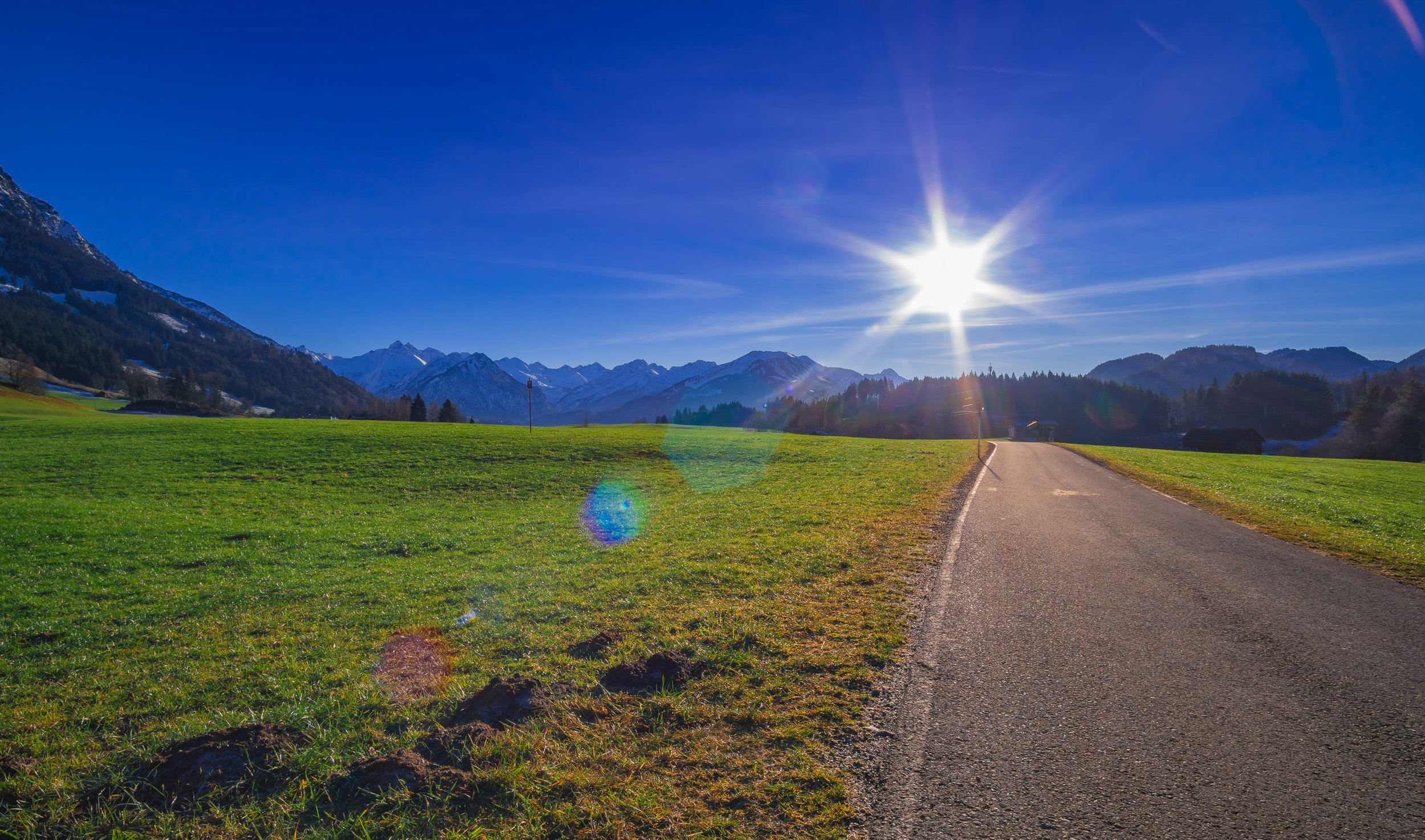 sunny_road.jpg