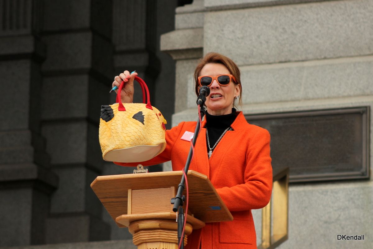 Speaking the steps of the Colorado State Capitol against Common Core.