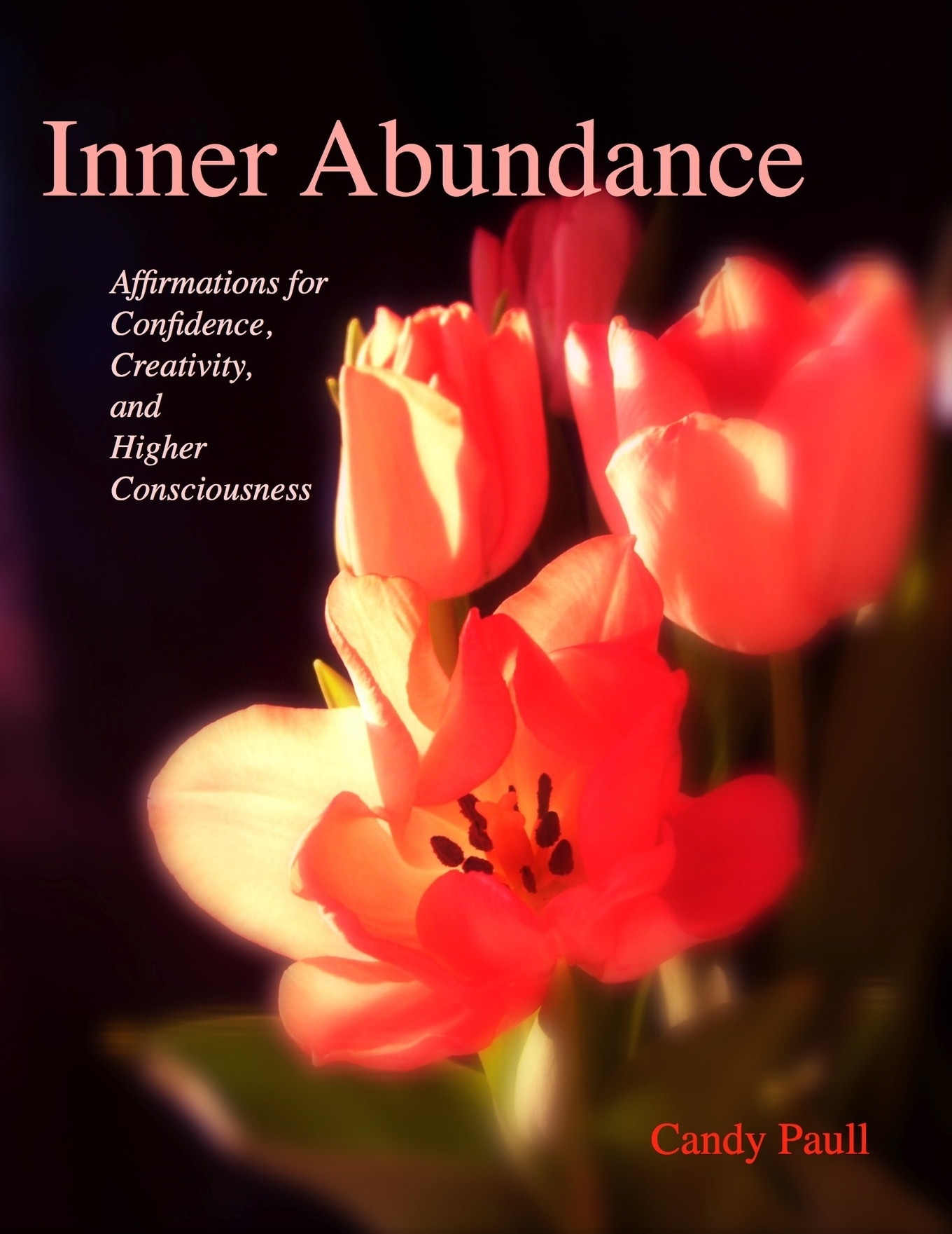 Inner Abund cover.jpeg