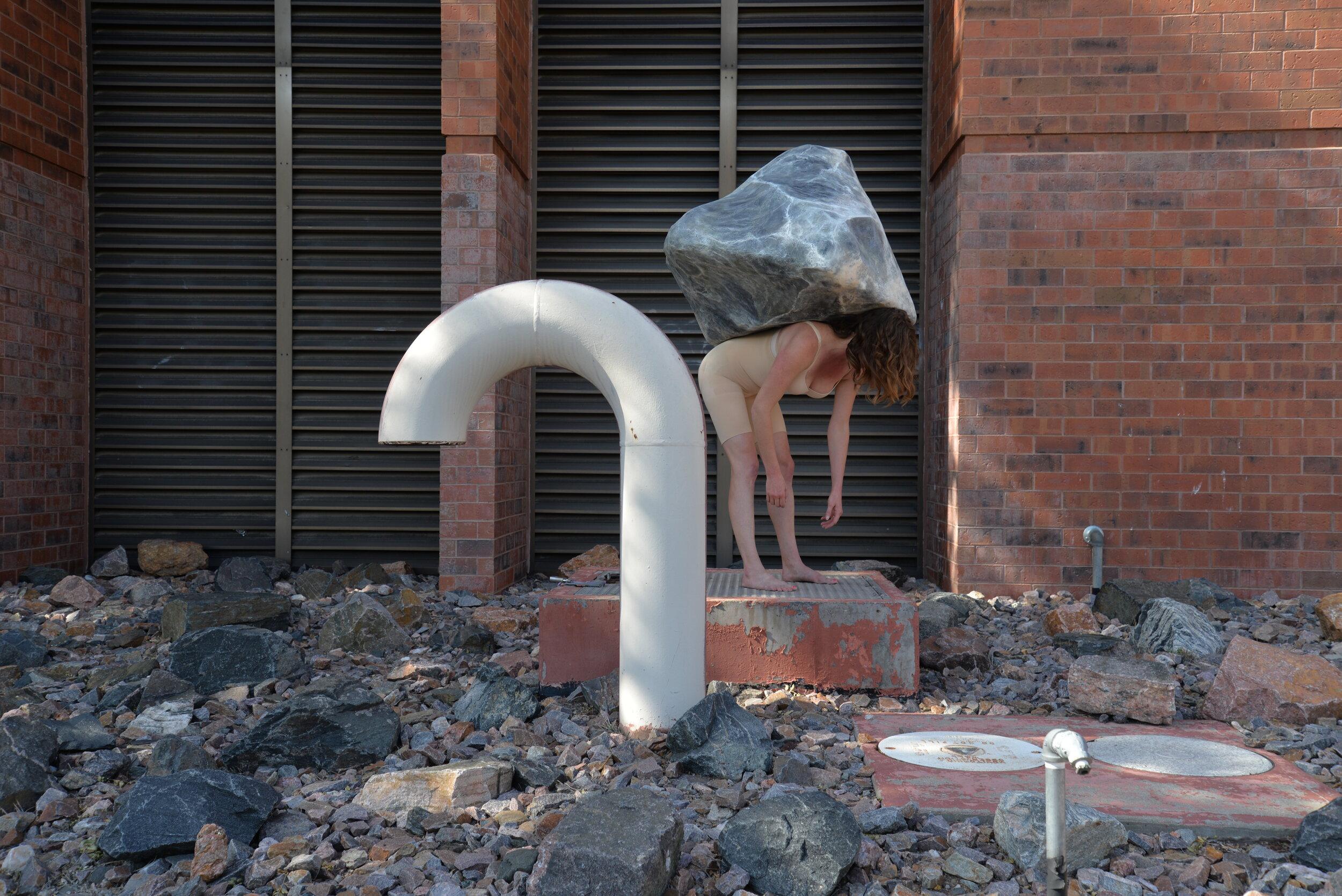 Schaefer Ordinary and Absurd_Brick.JPG