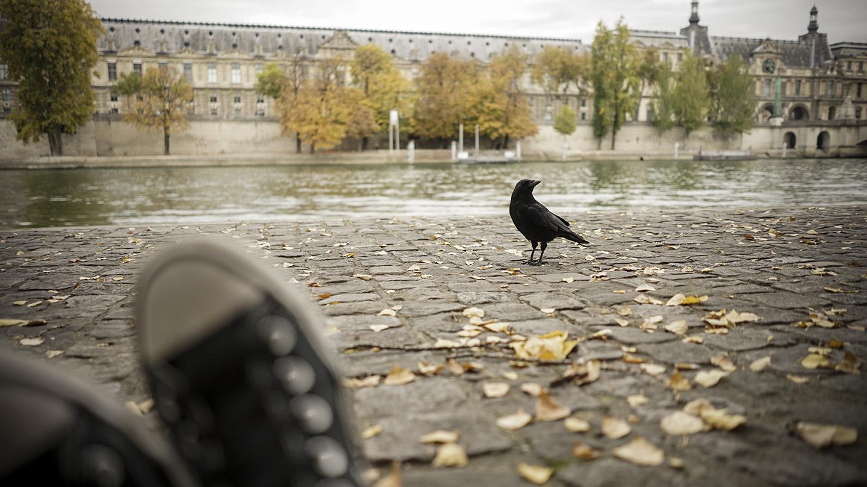 Paris_0028.jpg