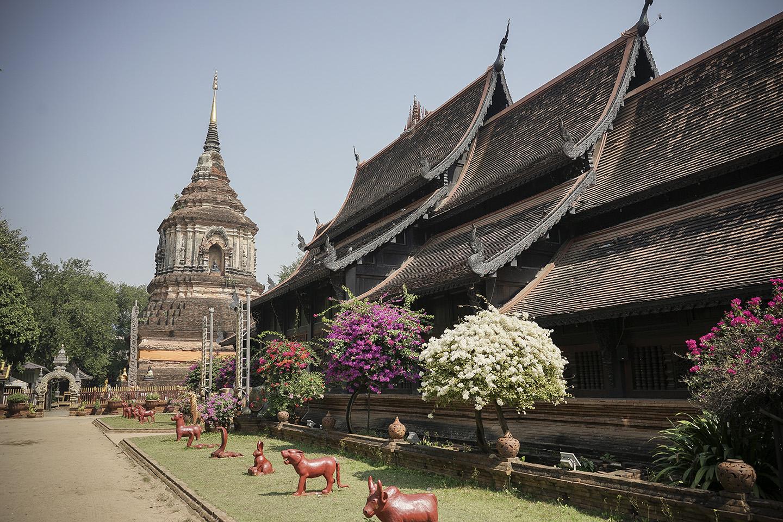 Chiang Mai_0011.jpg