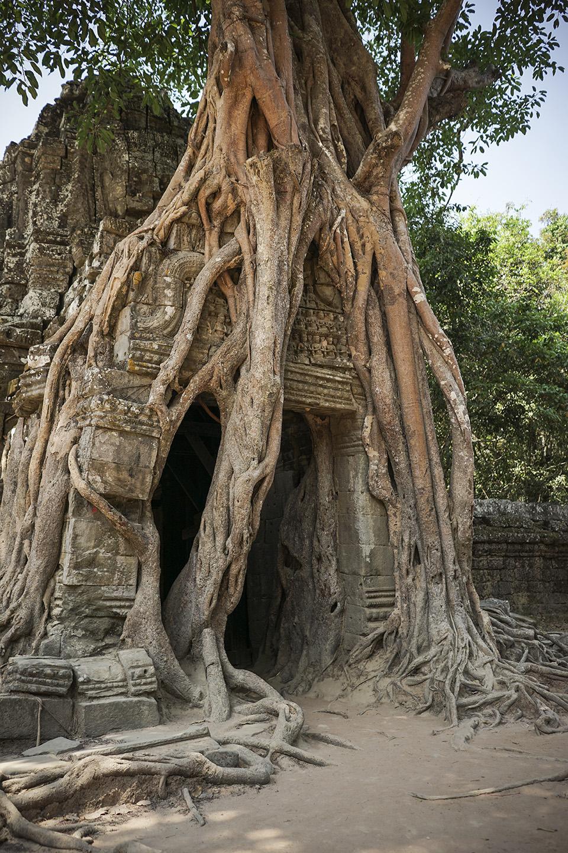 Siem Reap_0062.jpg
