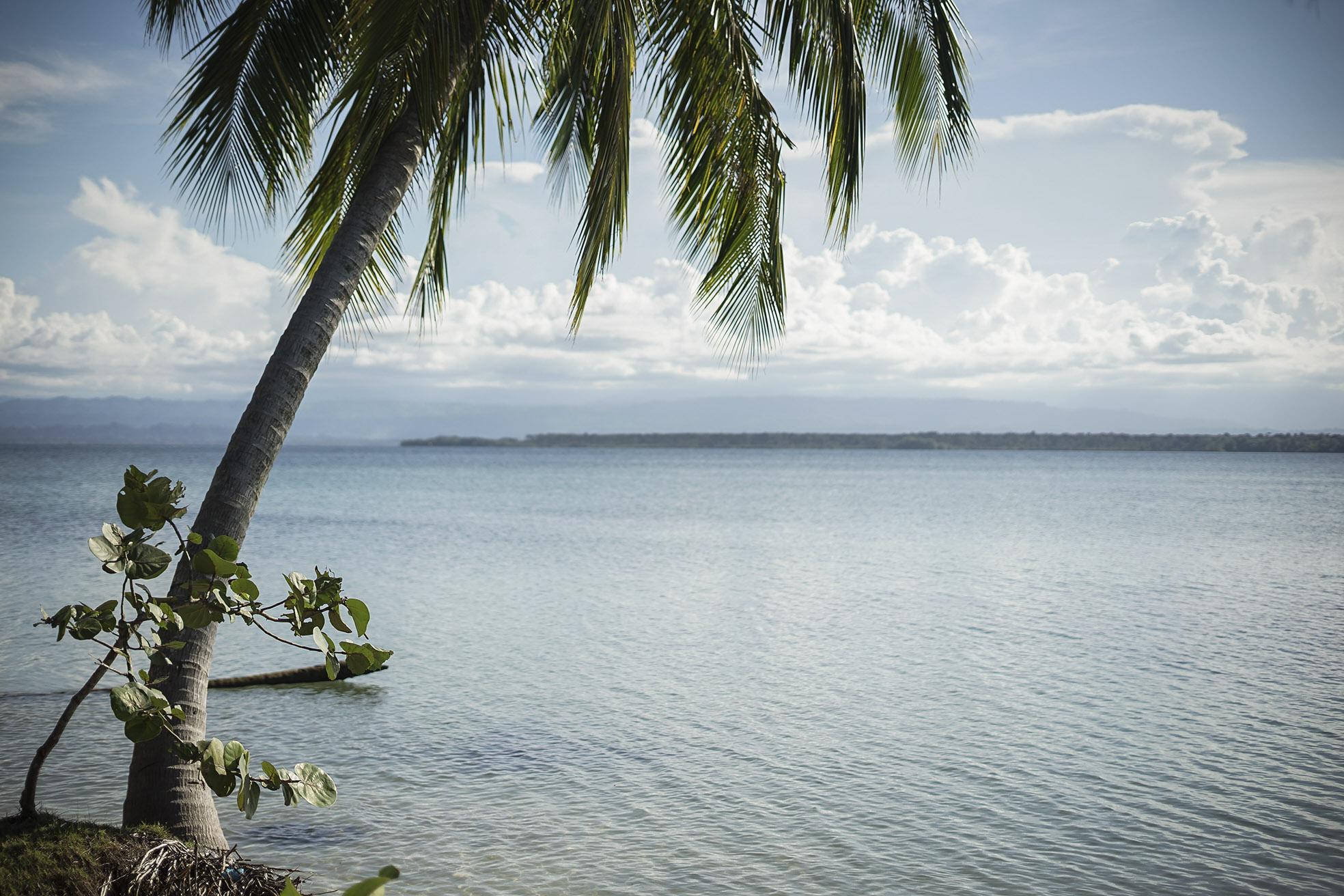 Playa Estrella (Bocas Del Toro)