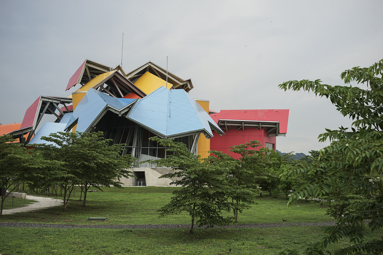 Museo Biodiversidad