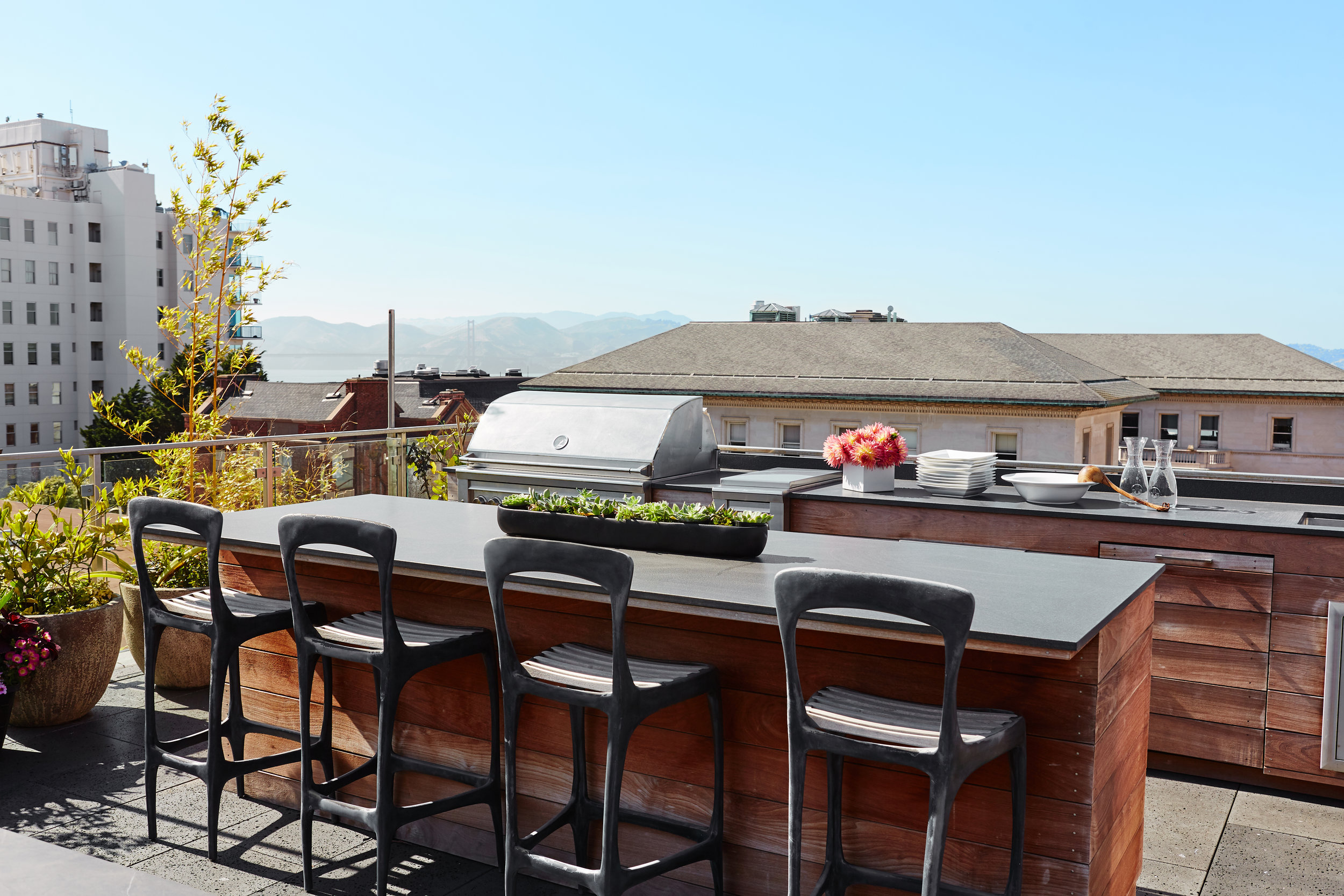 Noz Design - Pac Heights House with a Roof - Roof deck kitchen side.jpg