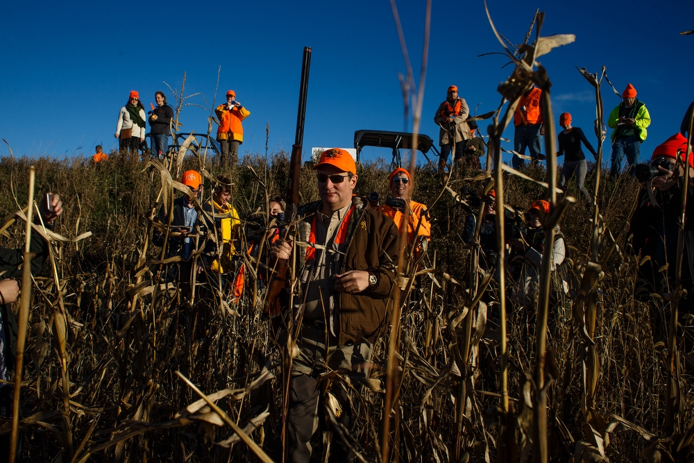 Republican presidential candidate Ted Cruz walks through the fields as he hunts pheasants at The Hole N the Wall Lodge on Saturday, October 31, 2015 in Akron, Iowa.