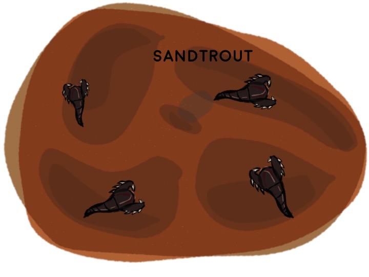 2) Sandtrout Develop