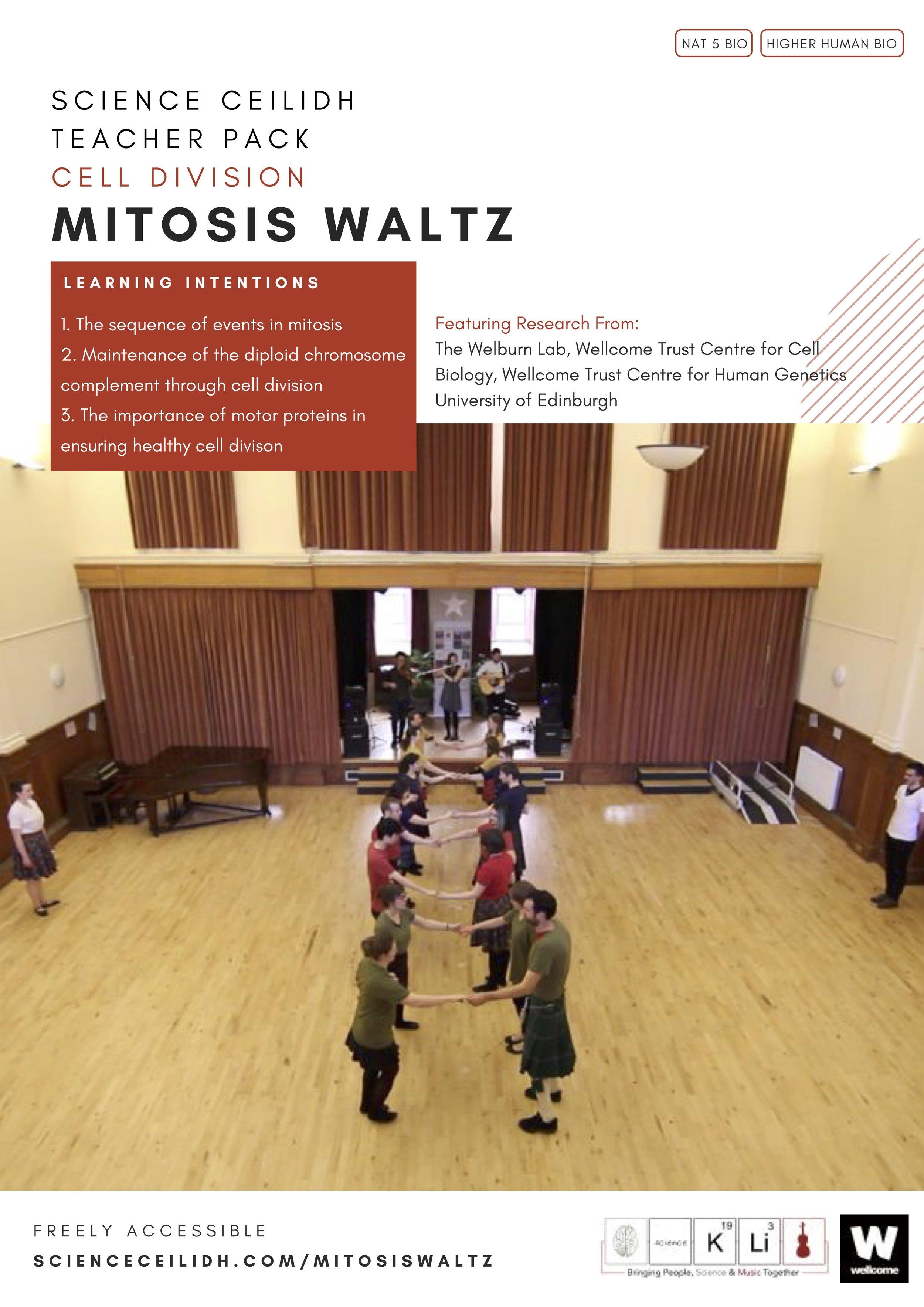 Mitosis Waltz (5).jpg