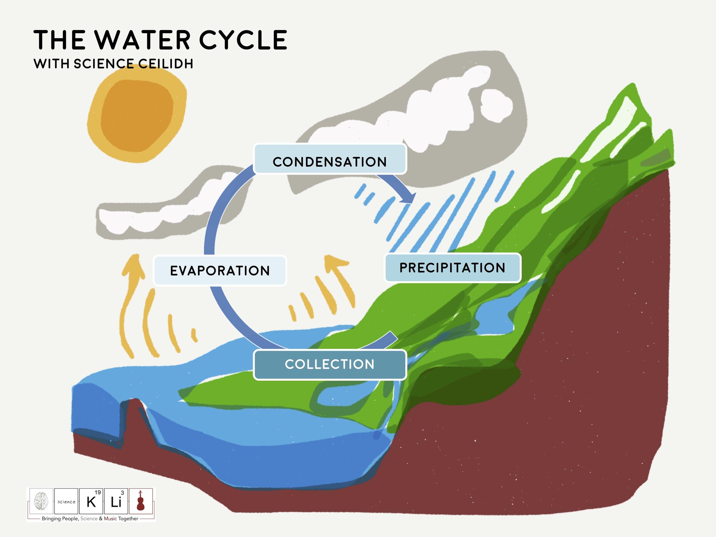Climate Change Diagrams Water Cycle.jpg