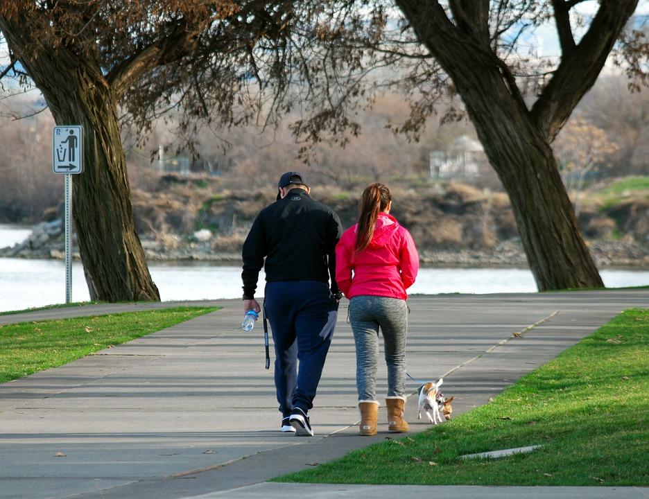 walking-dog-1243310_960_720.jpg
