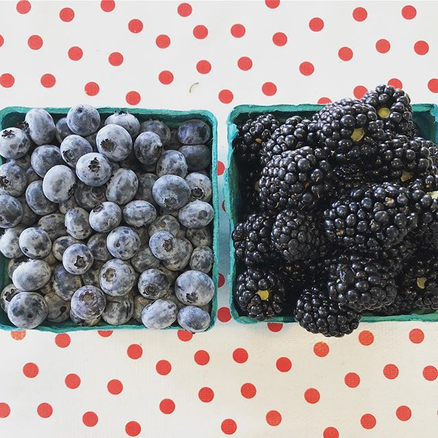 Blueberries and blackberries this weekend! Our blueberries (Legacy, Chandler, and Elliot varieties) and {thornless} blackberries are open for picking ❤️ More details below: • Hours: 9am-5pm, Friday - Sunday CLOSED: Monday - Thursday ❤️NO ANIMALS ALLOWED❤️ U-pick blue/blackberries: $2.50/pound Pre-picked blueberries: $4.00/pound • • #columbiafarms #columbiafarmsupick #sauvieisland #pickyourown #blueberries #blackberries