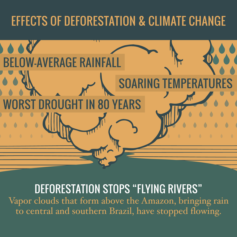 infographic_brazil_prev1.png