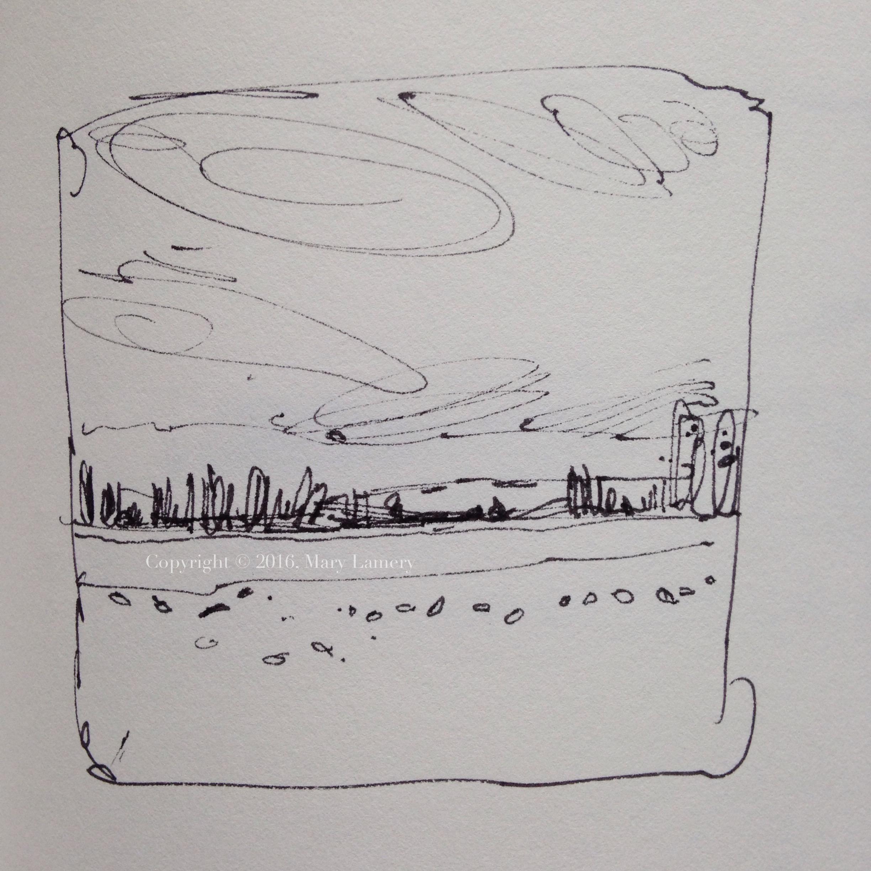 Sketch: Snow Geese in field.