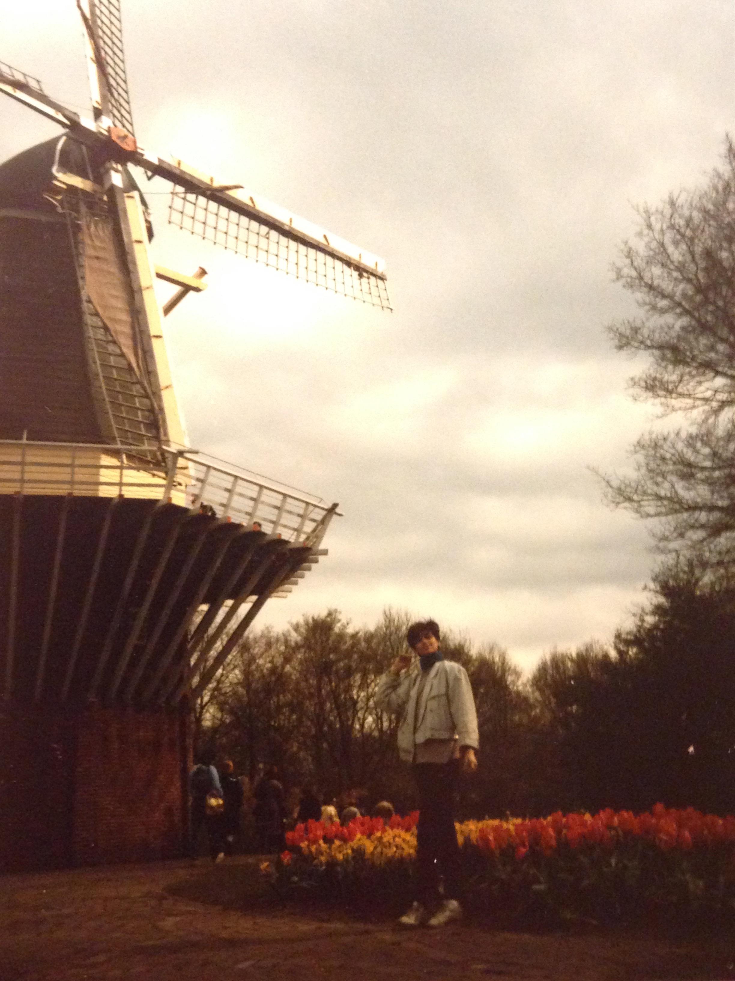 Quintessential Holland. 1985.