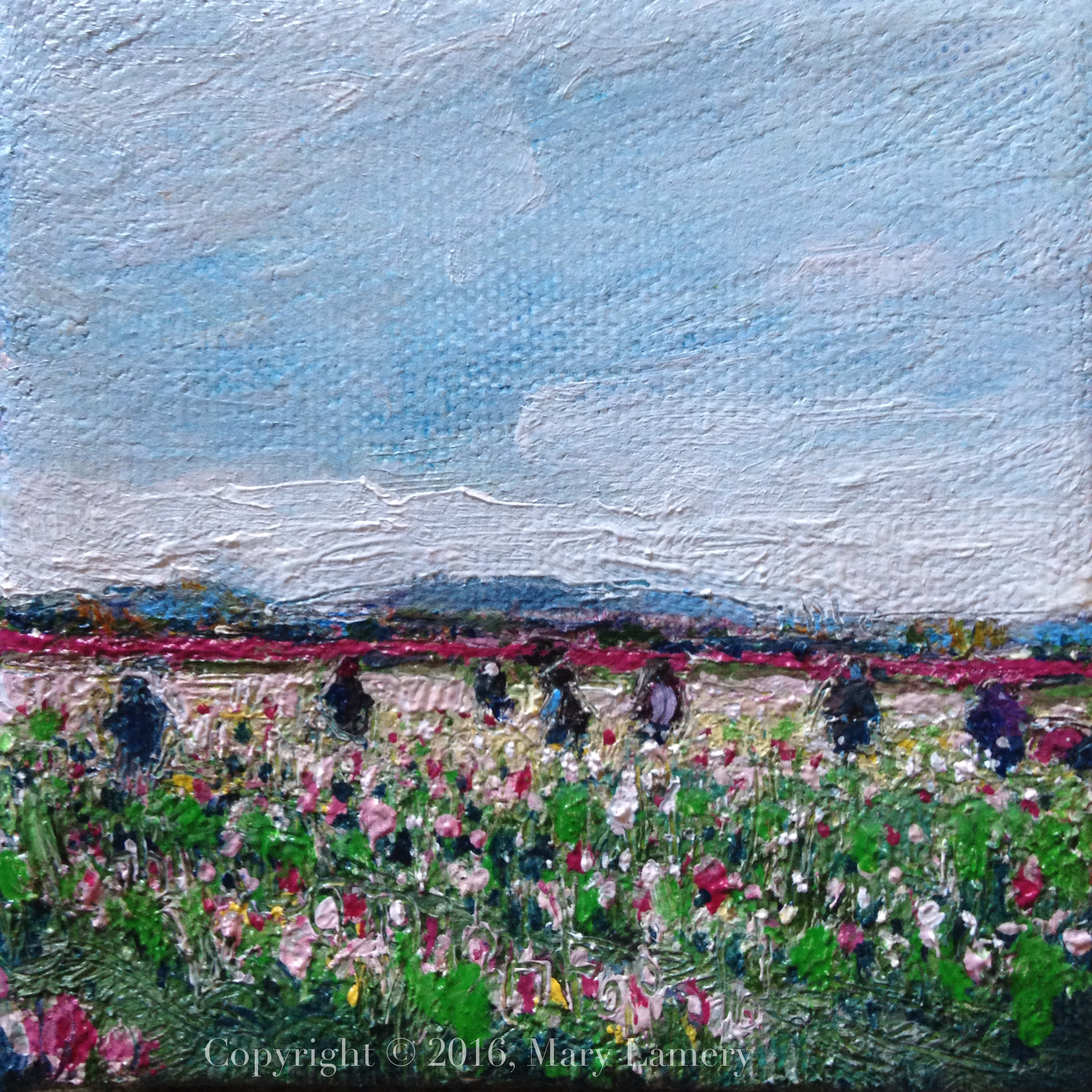 "Working in the Tulip Fields.  Oil on Canvas, 4x4."" 2016. M. Lamery"